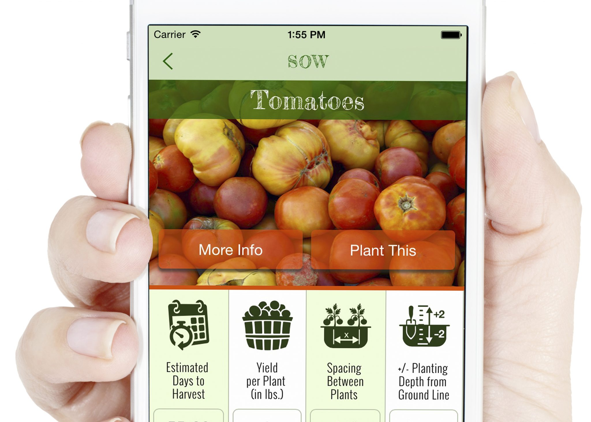 screenshot of SOW app