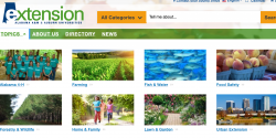 Topics on the Alabama Extension website