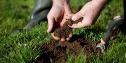 Soil testing in turf