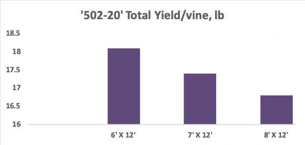 Figure 2. Total yield of '502-20' grape grown at the CREC, Clanton, AL, 2019.