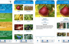 Farming Basics app