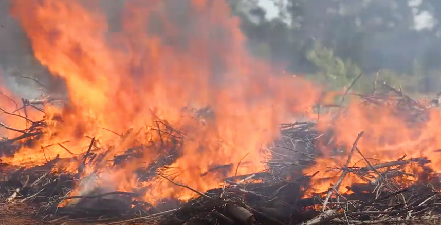 Burning Piles