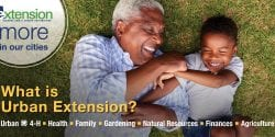 2019 What is Urban Extension Billboard: African American grandfather and grandchild are lying down and playing on the grass with big smiles.
