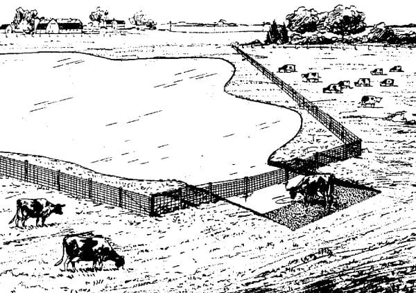 Figure 12. Livestock watering with limited access to watering ramp..