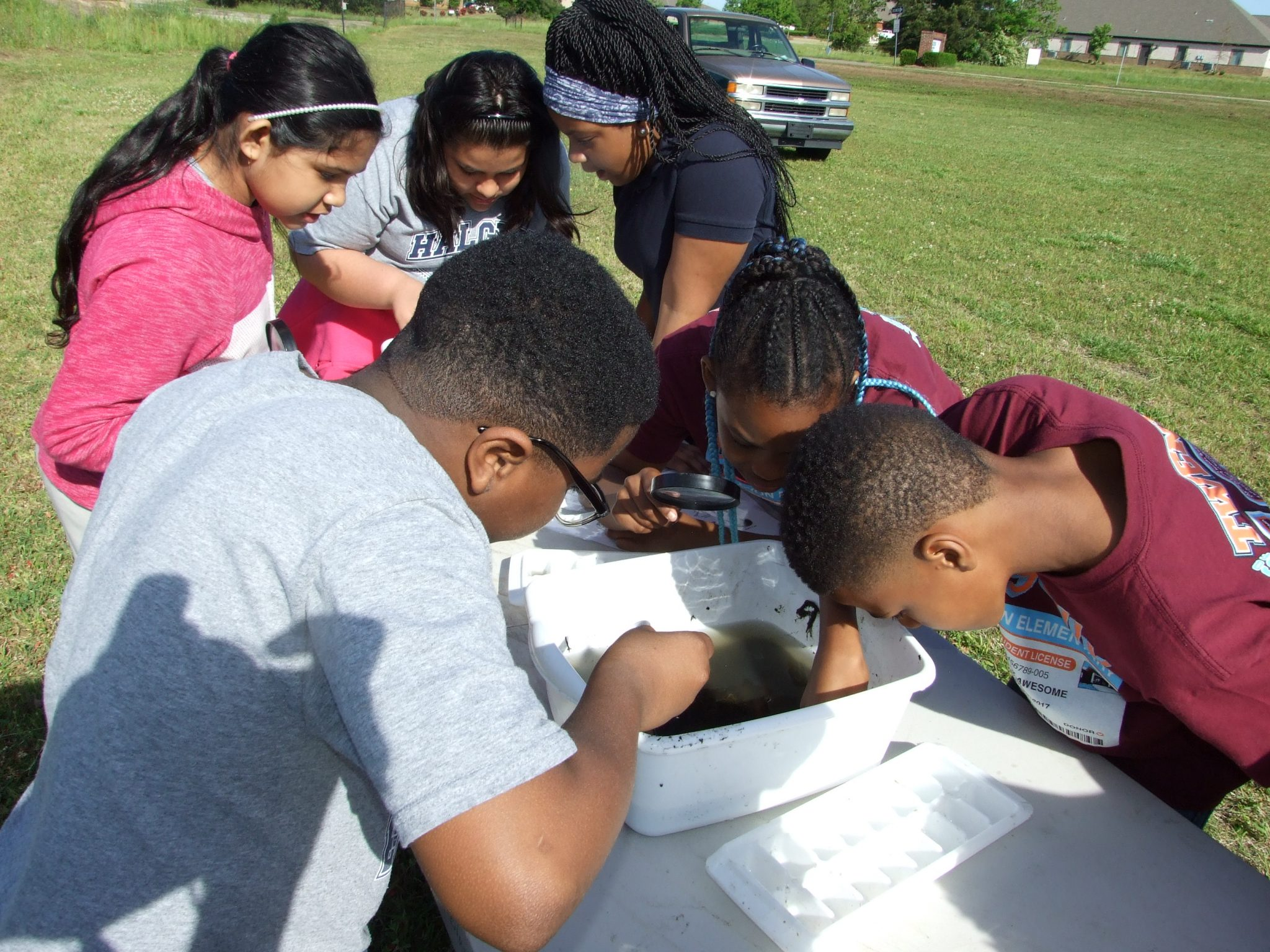 a group of older elementary kids look at water samples collected from nearby stream