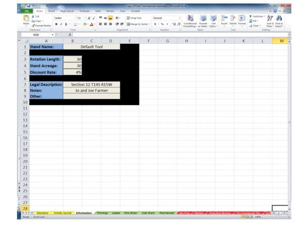 Figure 3. Screen shot of Information worksheet found in the FIFA tool