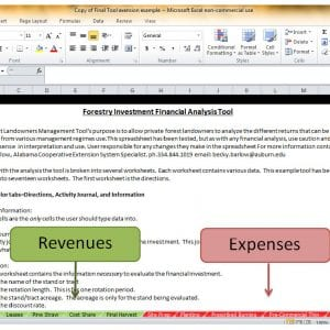 Figure 4. Screen shot of Revenue and Expenses worksheets found in the FIFA tool