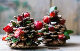 Pine cones decorated for the holidays.