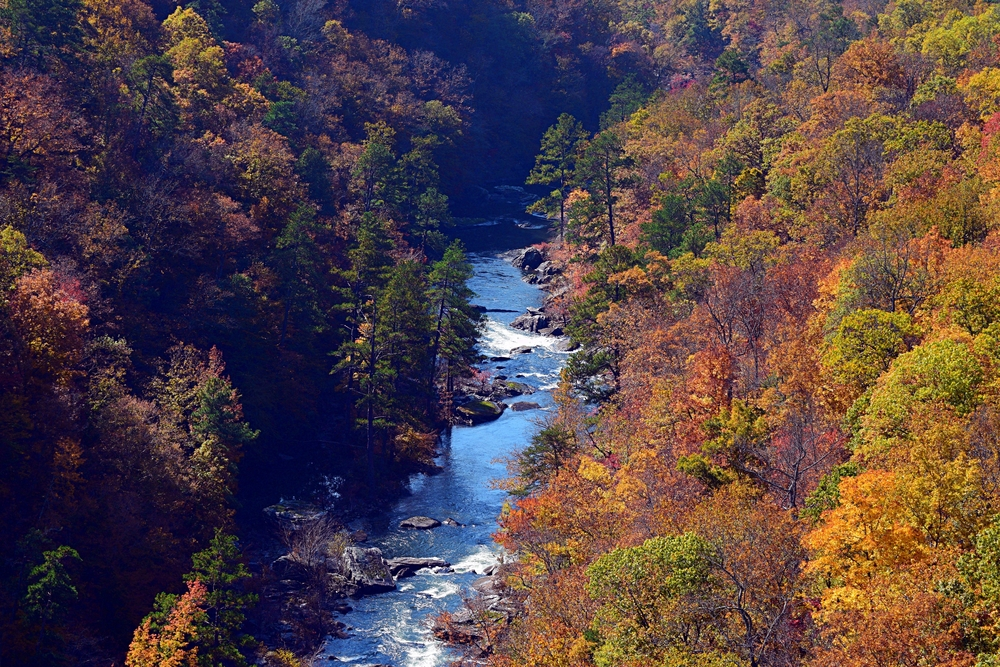 Fall colors of Autumn at Little River Canyon North Alabama