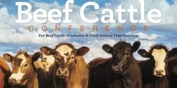 Beef Cattle Conference Save the Date Flyer