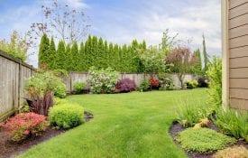 A home landscape