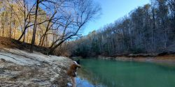 Brushy Creek Bankhead NF