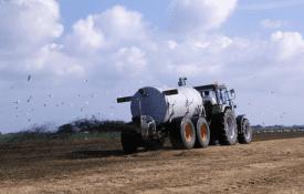apply organic soil amendments