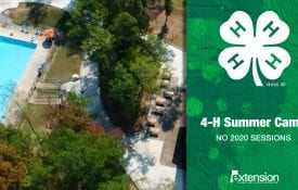 Alabama 4-H Summer Camp
