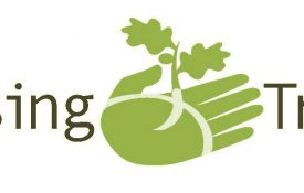 Raising Trees logo