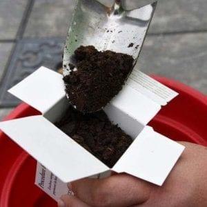 Figure 2. Taking a good soil sample.