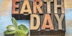 earth day - word abstract in vintage letterpress wood type with a green peppermint leaf