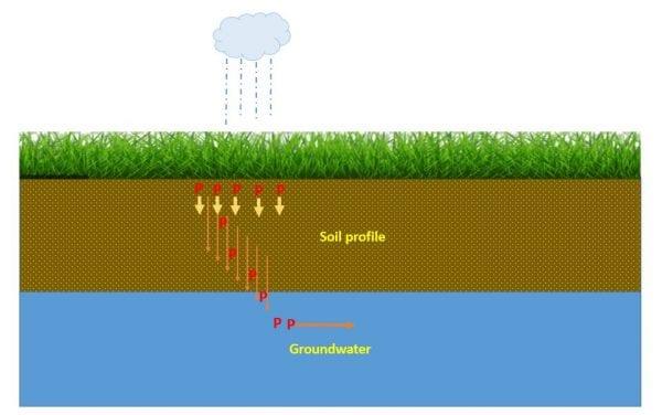 Figure 2: Leaching of phosphorus