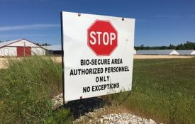 Biosecurity sign at chicken house, COVID-19