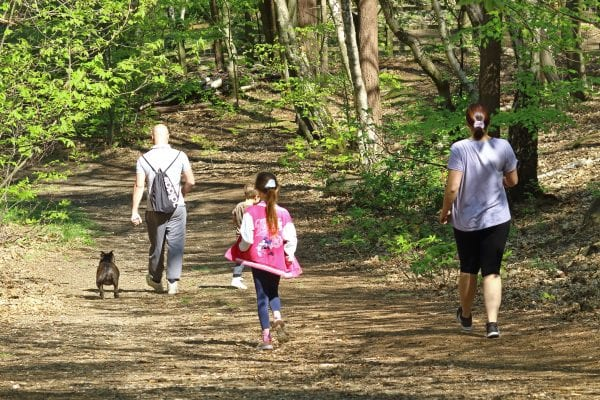 Family walking in the woods.