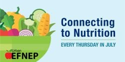 Connecting to Nutrition
