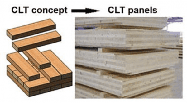 CLT wood products
