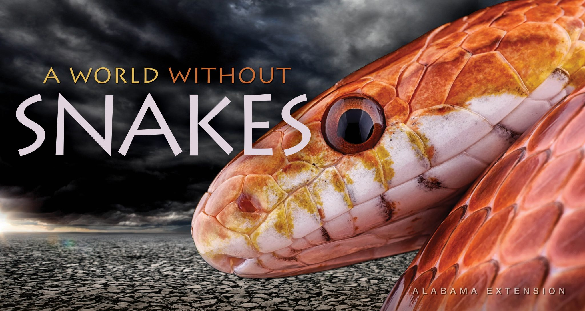 A World Without Snakes