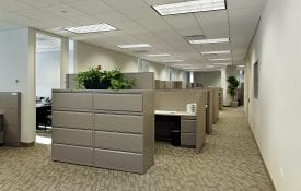 Office cubicles in the workplace