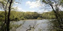 Chattahoochee River Near Atlanta Georgia