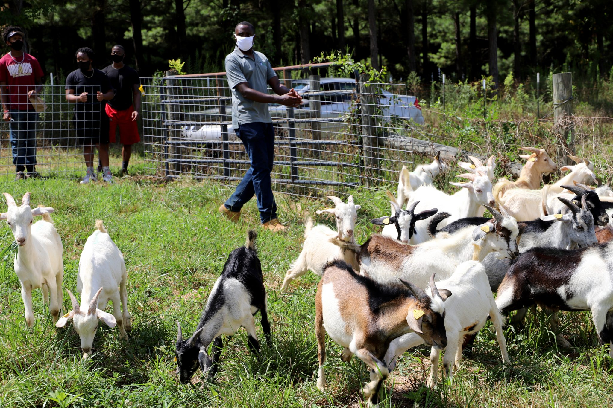 Animal Sciences and Forages Specialist Dr. Valens Niyigena, AAMU students with goats at Winfred Thomas Agricultural Research Station in Hazel Green, AL