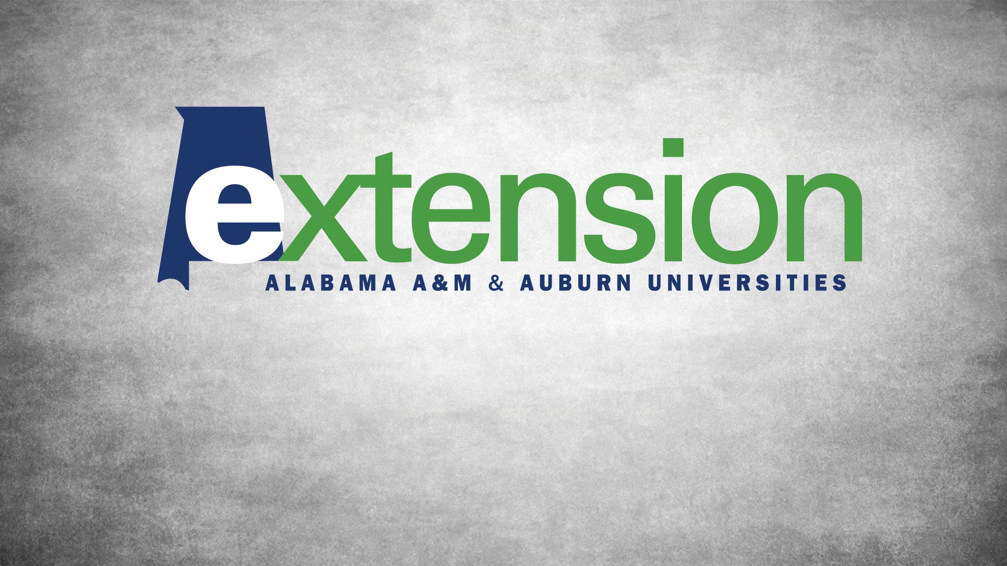 Extension logo on a gray background