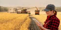 Woman farmer with digital tablet on a background of harvesters.