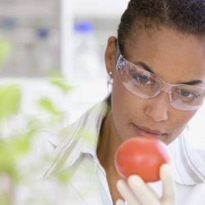 Black female scientist performing analysis in laboratory on tomato