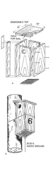Figure 2. Assembly and installation details for a wooden next box for squirrels (after Barkalow and Soots, 1965b).