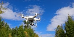 A drone in a forest