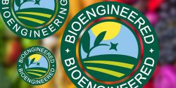 Figure 1. New Bioengineered food label with produce in background.. Composite made using iStock image by Bojsha65