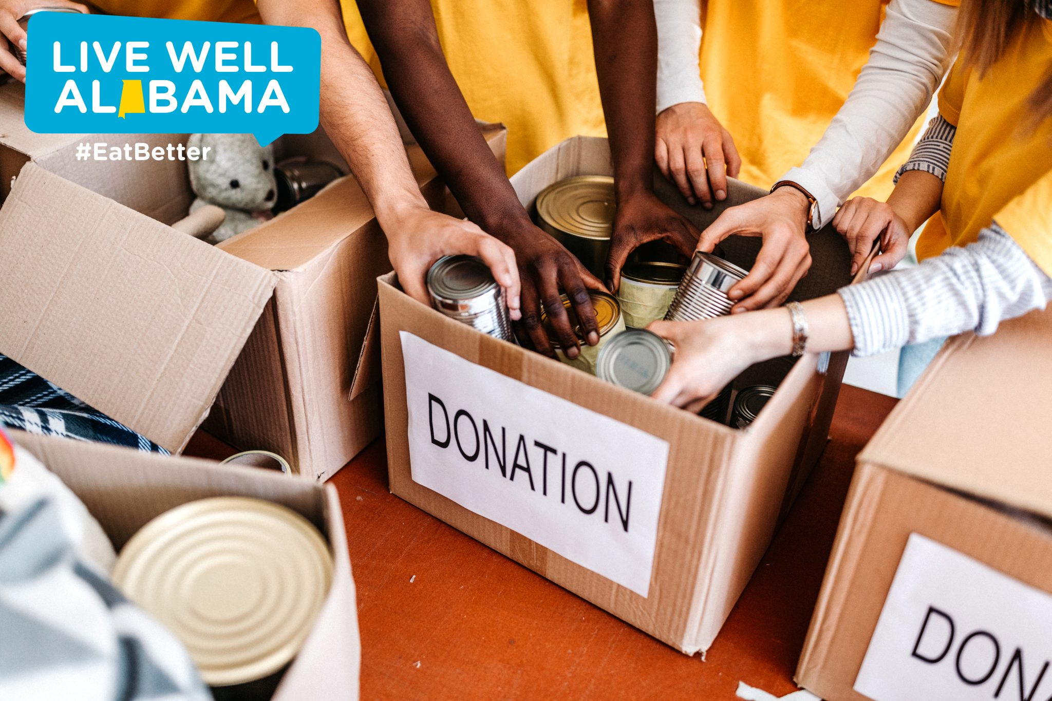 Hands in donation box
