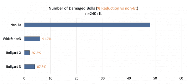 Figure 6. Total number of damaged bolls (and % reduction compared to non-Bt) found just prior to harvest in Prattville, Alabama (2020).