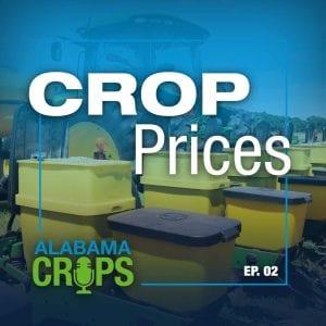 Crops Podcast Episode 2