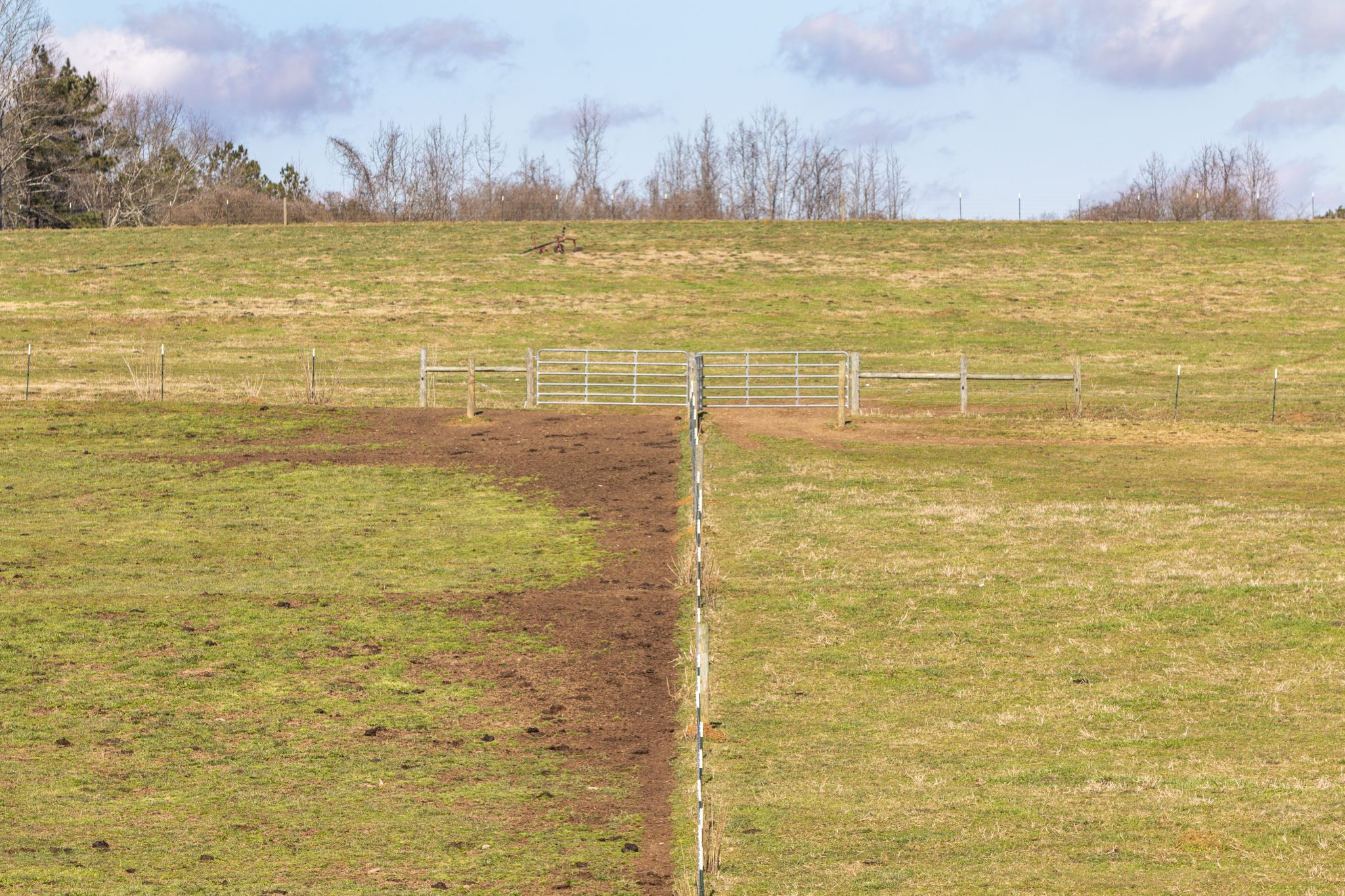 Pasture with fence