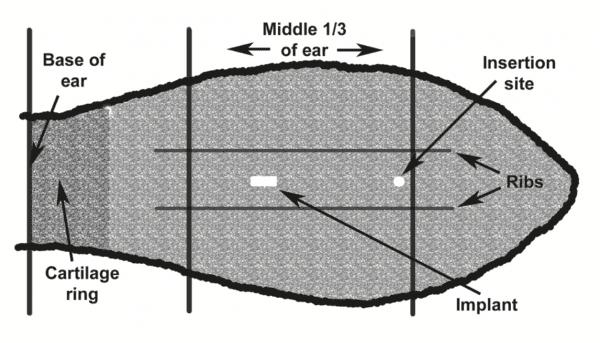 Figure 1. Implant location