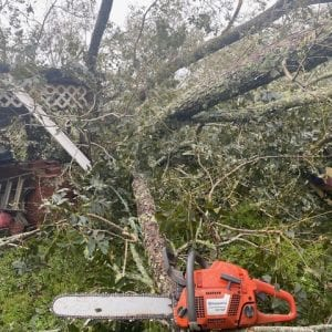 Downed trees with a chain saw