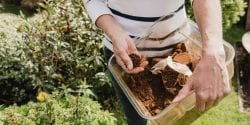 Woman using coffee grounds in the garden
