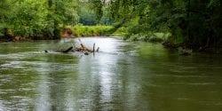 The Flint River in North Alabama near Huntsville