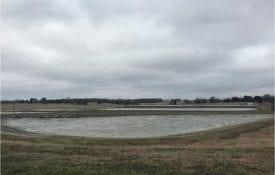 catfish ponds