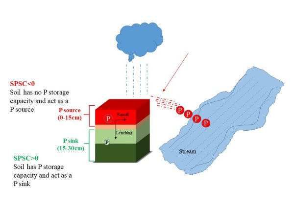 Figure 2. Soil phosphorus storage capacity in 0–30 cm soil depth. The surface horizon (0–15 cm) has no remaining phosphorus storage capacity due to repeated phosphorus loading; hence surface horizon is acting as a P source. The subsurface soil (15–30 cm) still can retain phosphorus and is acting as a P sink.