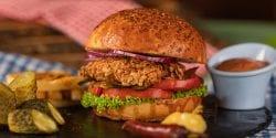 Homemade fried chicken sandwich