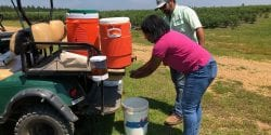 mobile on-farm handwashing station; produce safety rule