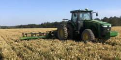 planting corn into a cover crop that has already had a burndown herbicide application
