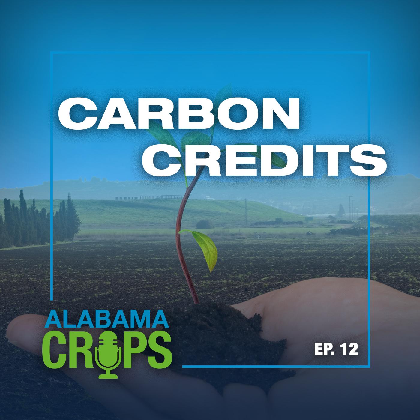 carbon credits